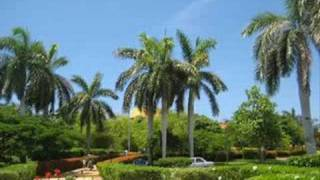 Gadjo- Besame mucho Caribe mix 2008