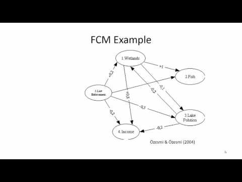 Introduction to Fuzzy Cognitive Maps