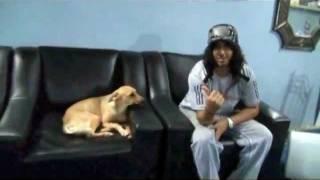 Abdullah Minor Teach your dog كيف تعلم كلبك على الطاعة جزء2