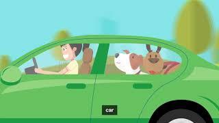 RSPCA Pet Insurance Ultimate Pet Travel Guide