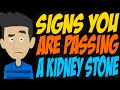 Signs You Are Passing a Kidney Stone