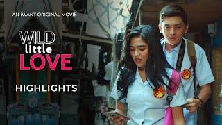 Download Wild Little Love Movie Preview   iWant Original Movie