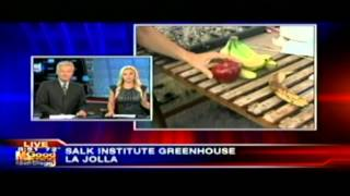 KUSI-TV - New Plant Technology - Salk News Clip - Part2