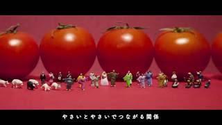 公式Twitter https://twitter.com/usotsukitomato 7月20日(水)発売 ヴ...