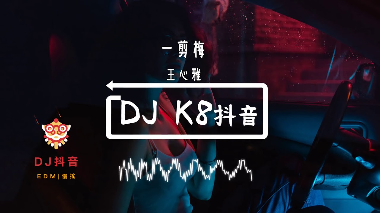 """xue hua piao piao""  DJ remix"