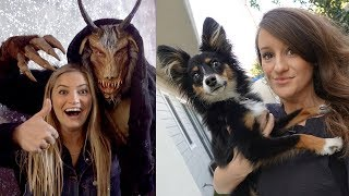 Surprise Puppy Visit, Star Wars Gallery and Scary Christmas!