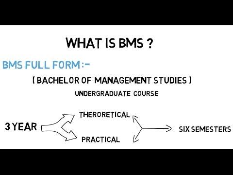 What is BMS? BMS Kya Hota Hai (Hindi/Urdu) MansoorMB