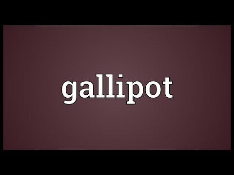 Header of gallipot