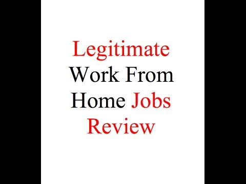 Online Profit for Dummies Fully Exposed : Legitimate Work From Home Jobs?