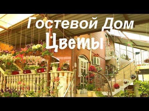 Геленджик частный сектор Гостевой дом Цветы улица Грибоедова 3а