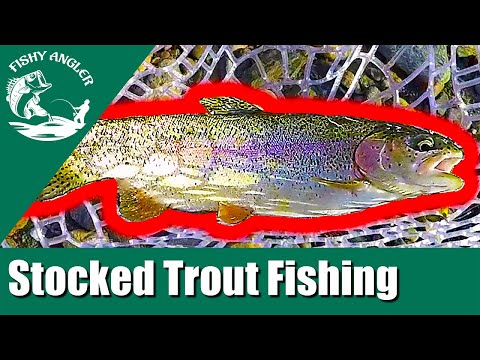 Trout Fishing White Clay Creek Delaware (May 2019)