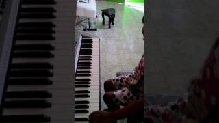 Belajar Fingering Bermain Piano untuk Pemula oleh Zaskiah Icha Puluko   zaskiah raisyah utami puluko