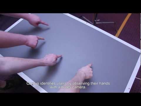 Carpus: A Non-Intrusive User Identification Technique for Interactive Surfaces
