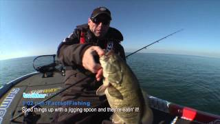 Speed up for Giant Fall Smallmouth Bass - Dave Mercer