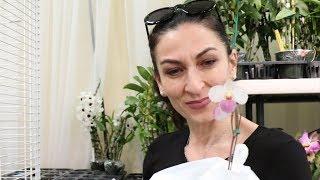 Цветочный Шопинг - Выбираю Мои Орхидеи - Эпизод 28 - Семейный Влог - Эгине - Heghineh