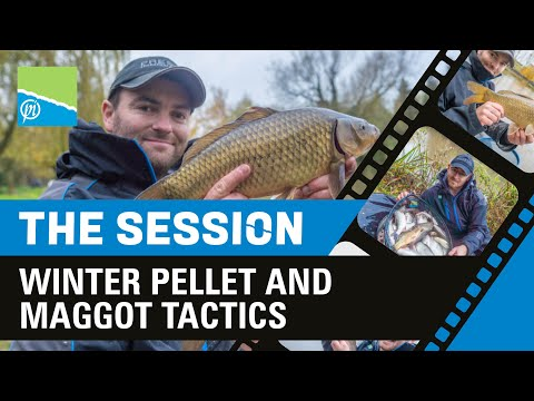 THE SESSION - Winter Pellet And Maggot Fishing | PRESTON INNOVATIONS