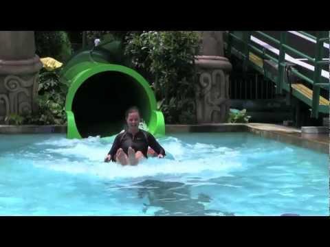 Marine Life Park - Thrills & Spills at Adventure Cove Waterpark (I)