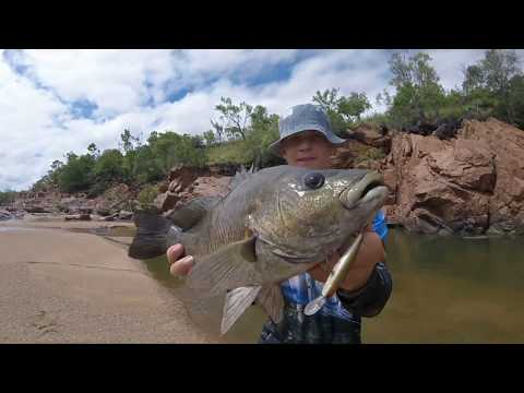 Insane Freshwater Fishing. Fish Nearly Every Cast. QLD.