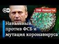 Как Навальный звонил предполагаемому отравителю и задержание юриста ФБК Соболь в эфире DW Новости