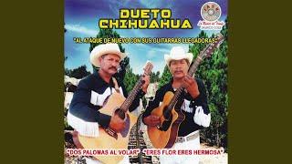 Jose Roberto y Simon