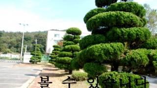 """(주)소리샘보청기 '세상과 소통"""" UC…"""
