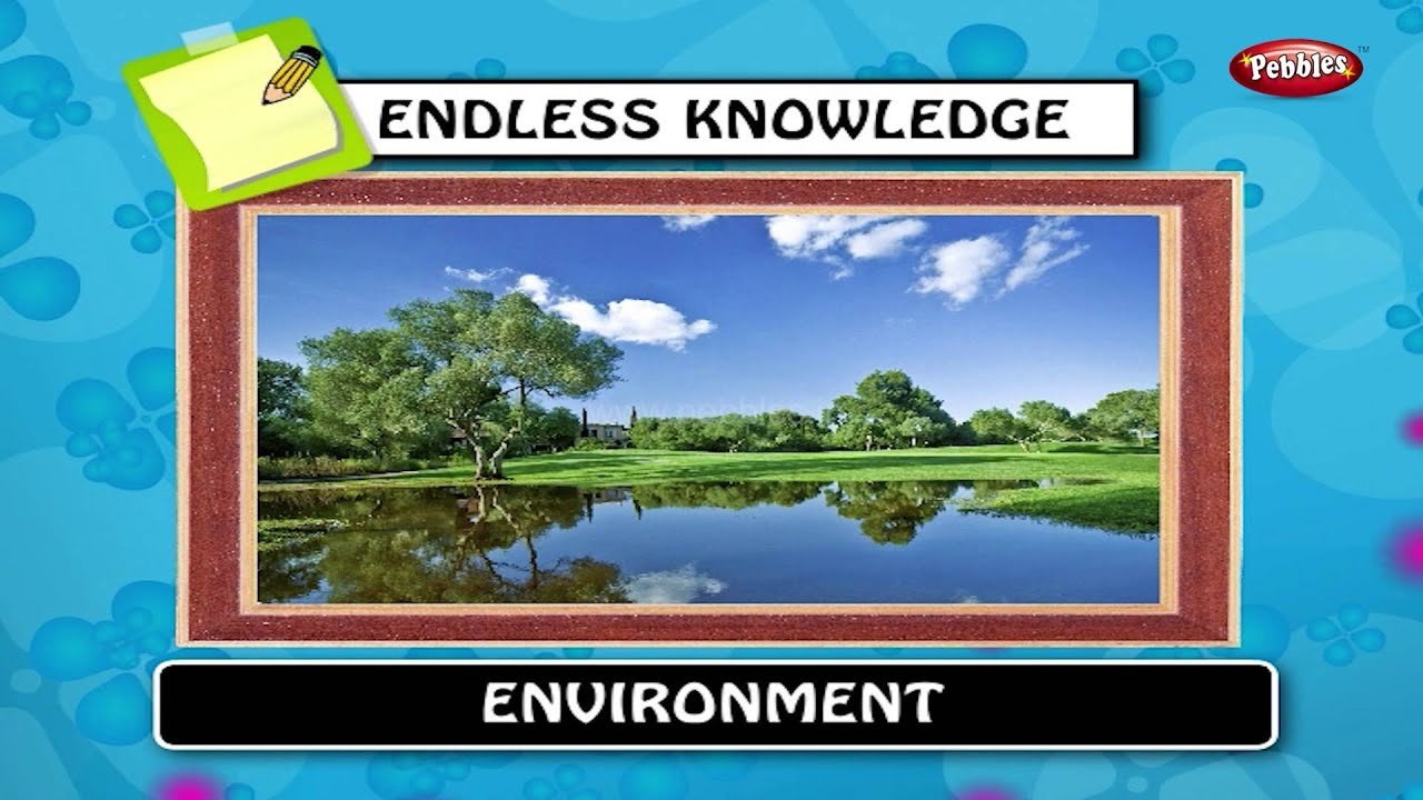 Gk Environment | gk for kids | gk question and answers | gk tricks |  general knowledge