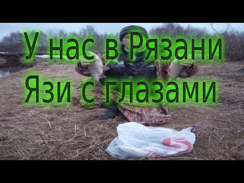 Рыбалка на Пре -  Рязанская область