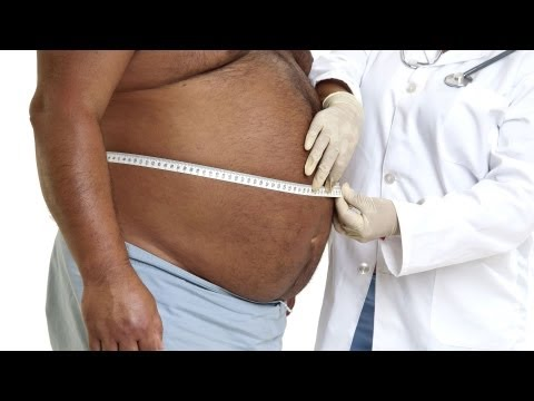 How the Body Stores Fat   Obesity