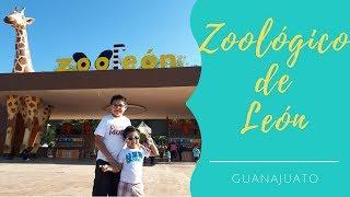 Visita a Zooleón   Zoológico de León, Guanajuato