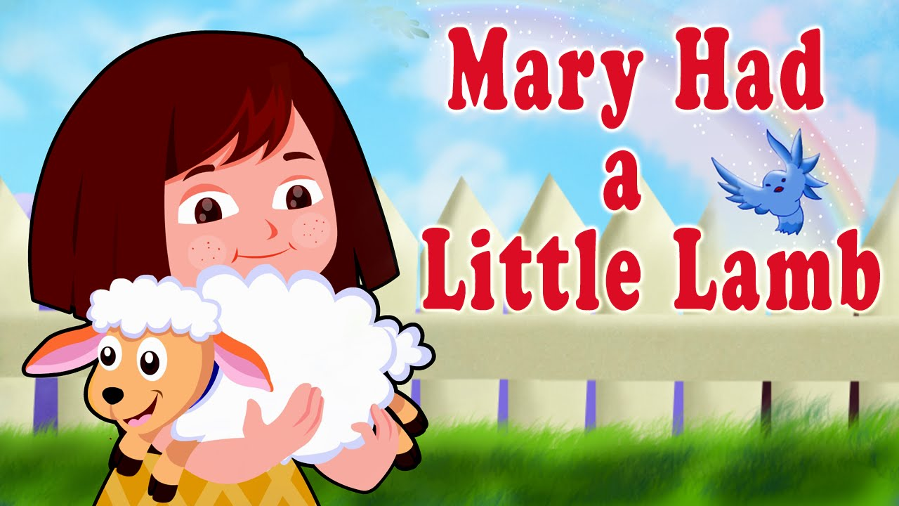 a song about a little lamb Nursery rhyme mary had a little lamb with lyrics and music the nursery rhyme mary had a little lamb was first time published in 1830 this nursery rhyme is about - yeah, you might already have guessed it - a lamb :) most parents remember this rhyme from their own childhood, and the kids love it.