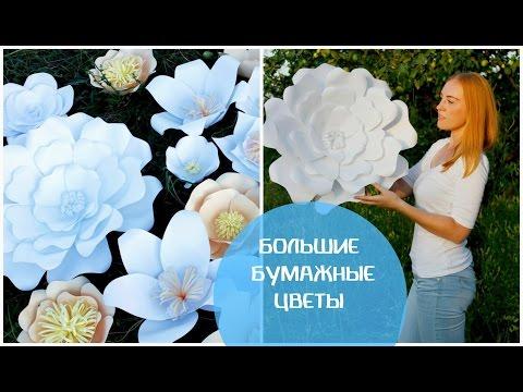 видео: ЦВЕТЫ ИЗ БУМАГИ i Большие бумажные цветы своими руками i Шелк Декор Фото i silk dekor foto