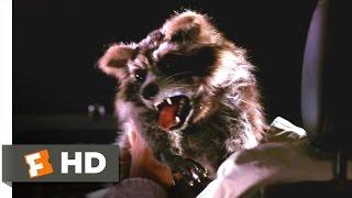 Harold & Kumar Go to White Castle - Rabid Raccoon Attack Scene (3/10) | Movieclips