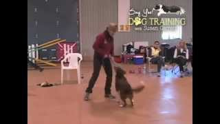 Say Yes Dog Training With Susan Garrett