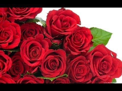 Bộ sưu tập các loại hoa hồng tuyệt đẹp (Silk Roses)