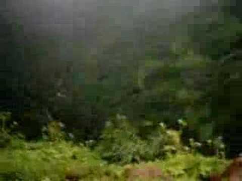 Amboli Gele Kavlesad Point In Monsoon Most Beautiful Youtube