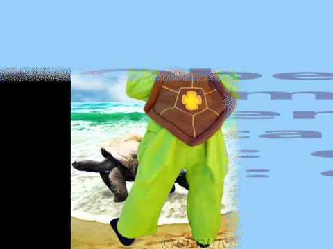 F62 Schildkröte Kostüm Schildkröten Kostüme Karneval Fasching Baby ...