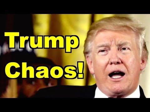 Trump Chaos! - Kellyanne Conway, Bernie Sanders & MORE! LV Sunday LIVE Clip Roundup 223
