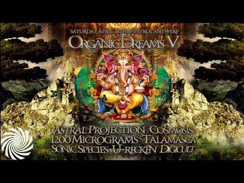 Oonah & Bonas @ Organic Dreams 2015
