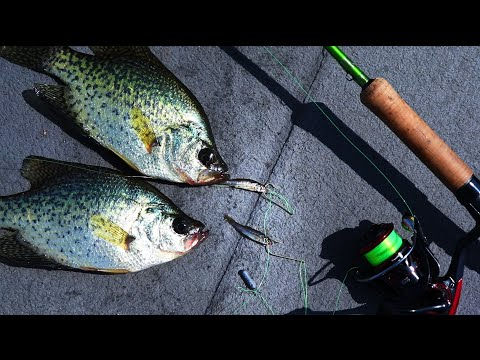 Double Minnow Rig For Fall Crappie (30 Day Challenge Ep.8)
