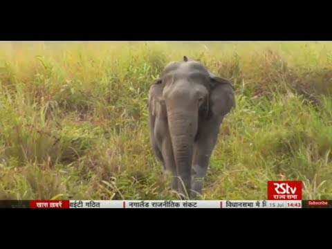 Science Monitor | 15.07.17