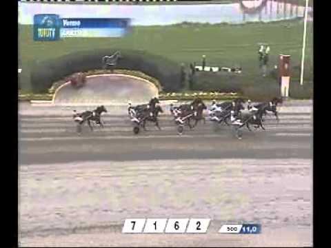 Suuri Suomalainen Derby 2008 -Ribaude