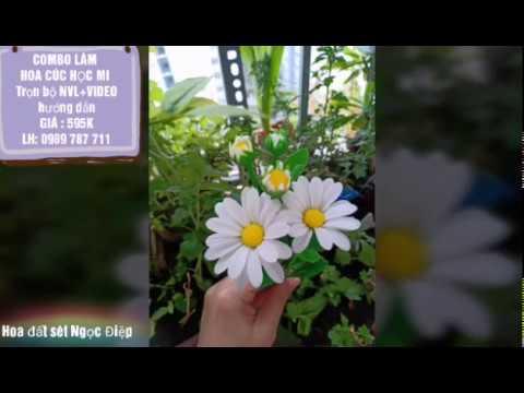 COMBO NVL + VIDEO DẠY LÀM CÚC HỌA MI – 595K