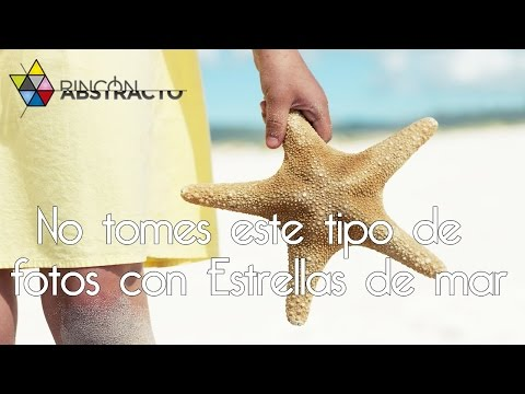 No tomes este tipo de fotos con Estrellas de mar