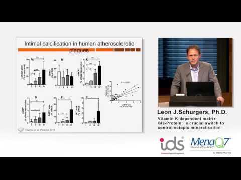 Vitamin K-dependent matrix Gia-Protein - Dr. Leon Schurgers
