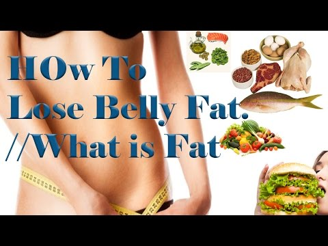 How to Lose Belly Fat | Lose Belly Fat / What is Fat / Video -1