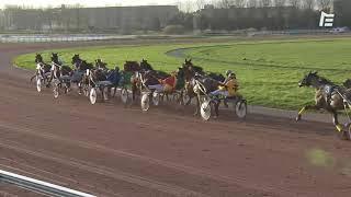Vidéo de la course PMU PRIX DE CAUVICOURT