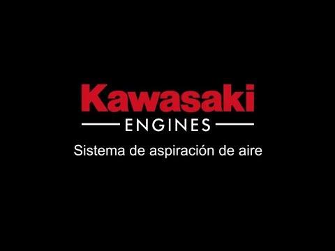 Cilindro Kawasaki estratificado