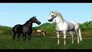 Dinky: The Nurse Mare's Foal