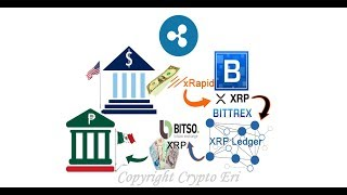 Biggest RIPPLE ( XRP ) Xrapid Announcement, Even Crypto Crow Bought Today!  Bitso Mexico