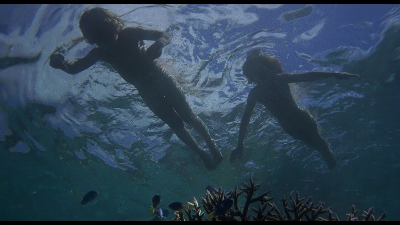 Download The Blue Lagoon (1980) - 3 - Surviving and Adapting